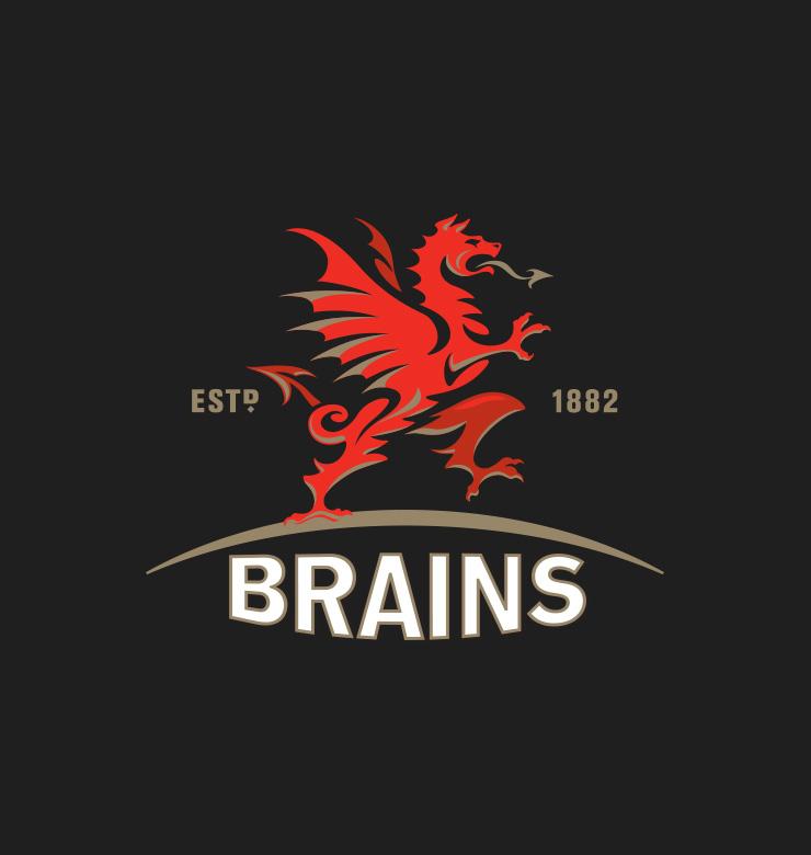 SA Brain & Co Ltd